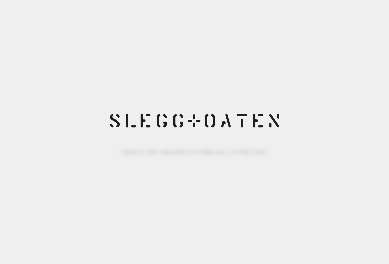 S+O Logo Type